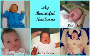My Newborns