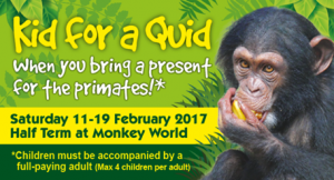 Moneky World Offer